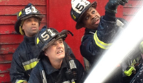BFD diversity